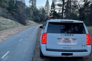 Mountain Lion Shot & Killed After Stalking Family on California Trail